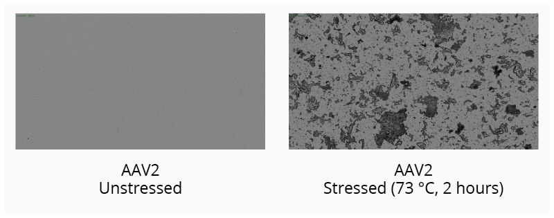 Monitor and categorize the type of aggregate formed in thermally stressed AAV2 samples