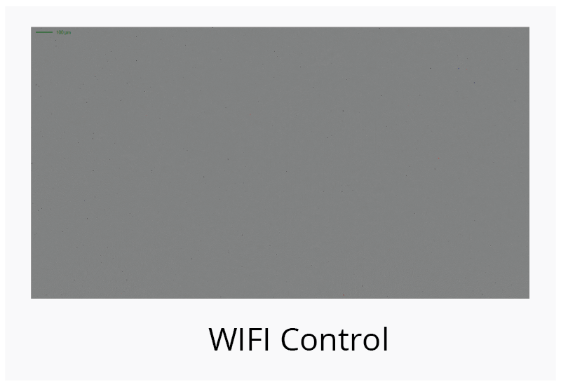 No capsid aggregation detected in WIFI negative control samples